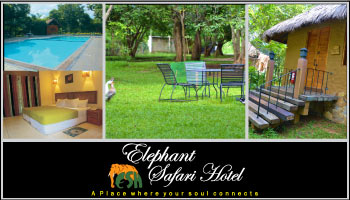 Elephant Safari Hotel Sri Lanka