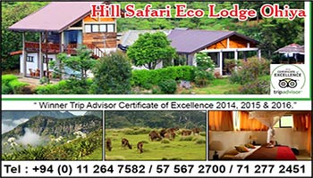 Hill Safari Eco Lodge Ohiya Sri Lanka