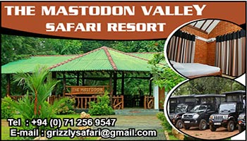 The Mastodon Valley Safari Resort